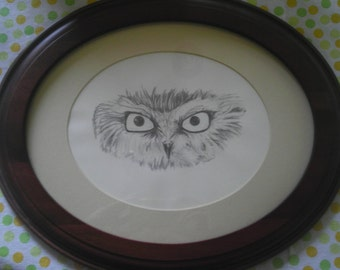 Owl Drawing - original drawing, framed