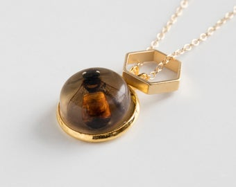 Bee Necklace - Honeycomb Necklace - Bee Jewelry - Taxidermy - Bee Pendant - Gold Bee Necklace - Insect - Oshun - Bee Gift - Honey Bee
