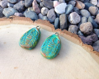 Rustic clay charms - fossil - set of 2