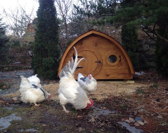 Lightfoot Hobbit Hole Chicken Coop for up to 6 birds; cedar and pine construction, ventilation windows