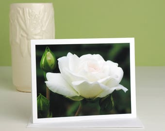 Floral photography note card, white rose flower photo notecard stationery, blank greeting card