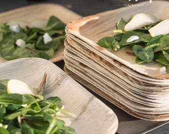 Disposable Palm Leaf Plates 25 Pack / 8\ . Compostable Biodegradable Heavy Duty & Palm leaf plates   Etsy