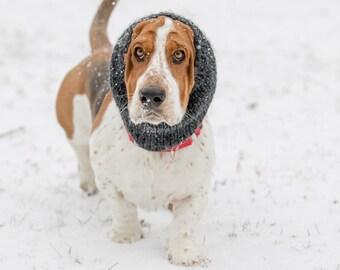 Basset Hound Snood, Knit Dog Snood, Snood for dogs, Dog lover gift, dog snood, basset snood, dog scarf, winter gift for dog, basset hound