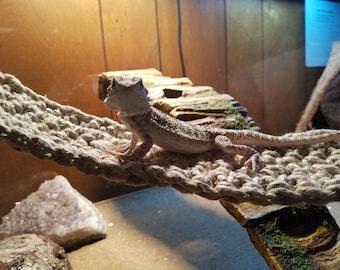 SWING Style: Reptile Hammock