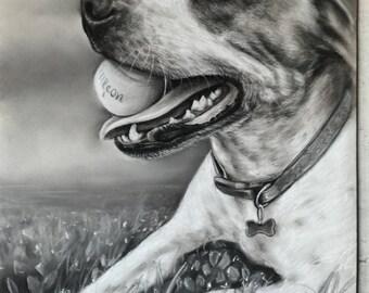 Pet portrait Painting  Custom Pet Portrait Dog portrait
