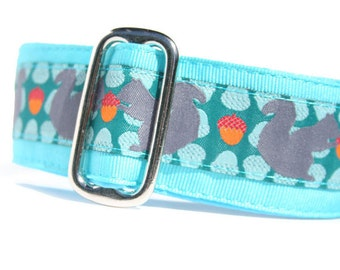 """1.5"""" Dog Collar Squirrelly - Choose Your Collar Style!"""