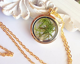 Glass locket with real moss in gold