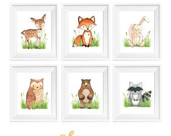 Boy Woodland Nursery, Deer Bear Fox Raccoon Owl, Woodland Animals, Woodland Nursery, Woodland Nursery Prints, Baby Boy Woodland Nursery
