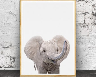 Baby Elephant Print Wall Art, Baby Elephant Animal Print, Safari Animal, Nursery Animal Print, Safari Nursery Art, Nursery Printable