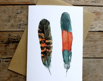 Feathers Designer Pack of 6 Notecards & Envelopes