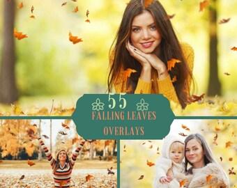 55 Falling Leaves Overlays, Photoshop Overlays, Leaves Overlays, Autumn Overlays, Falling Leaves, Autumn Leaves, Photoshop Leaves, Fall, PNG