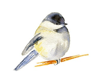Chubby Chickadee Watercolor Clipart Painting, Chickadee Print, PNG Instant Digital Download Clip Art, Printable Wall Art