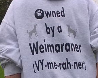 Hoodie Owned by a Weimaraner