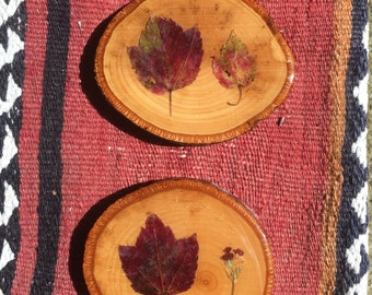 Oak Leaf Coaster Set