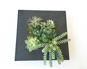 Succulent wall planter, hanging succulent arrangement, faux succulent, vertical garden, wall hanging, hanging planter, wall deco