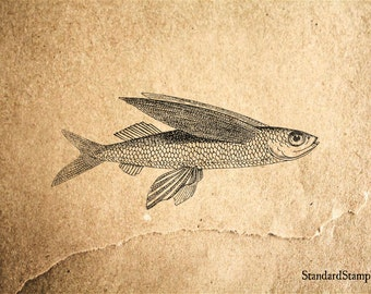 Flying Fish Rubber Stamp - 3 x 2 inches