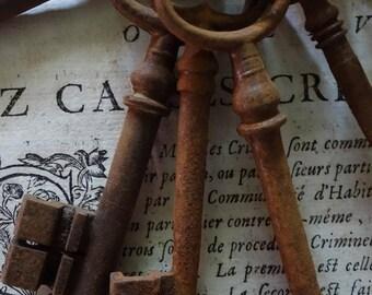 Set  12 Vintage French Keys Rusty Skeleton Keys,  Antique keys