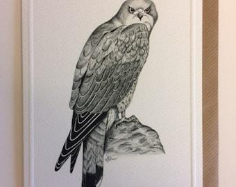 Kestrel card