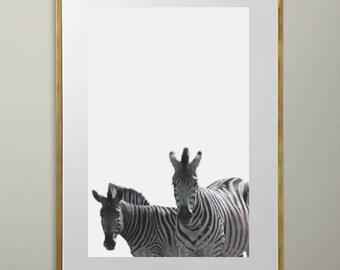 Two Zebras (Vertical)