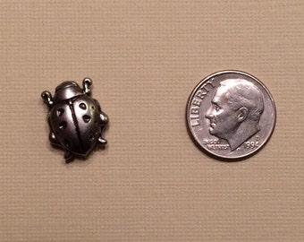 Ladybug Magnetic Fastener Cover