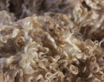 English Leicester raw wool fleeces unwashed - 3kg