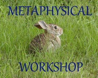 Metaphysical Workshop live online