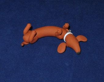 Dachshund laying on back