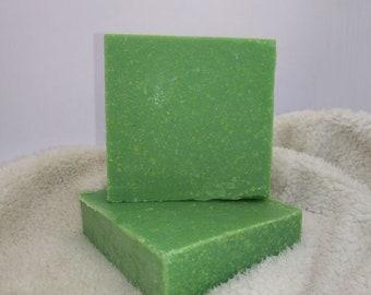 Almost Perfect - *Winter EverGreen* Handmade Artisian Soap