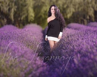Natural Lavender Field with flower PSD layer