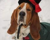 Christmas Caroler Dog Cat Pet Costume Hat by MattiOnline on Etsy CUSTOM Hat only