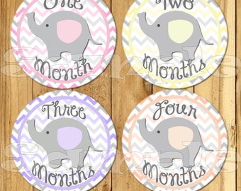 Baby Monthly Stickers Baby Elephant Month Stickers Baby Girl Shower gift 1- 12 Months bodysuit stickers infant month stickers Milestone set