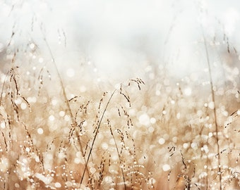"Morning Dew Nature Photography, bokeh gold dawn photo sparkle light brown pale cream sparkly photograph white abstract art ""Magical Morning"""