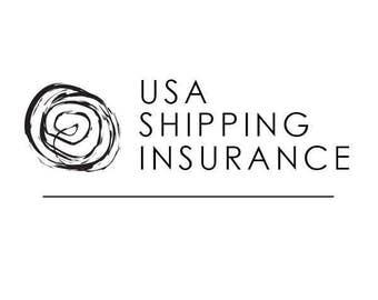 USA Shipping Insurance
