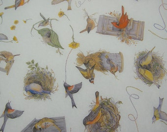 """Bird House Bird Nest Print Tissue Paper Sheets - 20"""" by 30"""" - Spring Gift Wrapping Paper - Pattern Print Tissue - Bird and Nest - 12 sheets"""