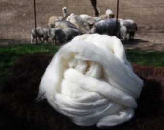 Spinners Delight!! 1 Pound Wool Roving