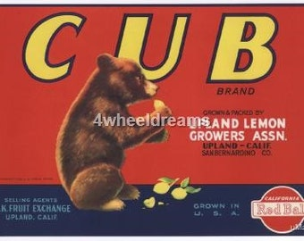 1940s Baby Bear Cub Lemons Red Ball Citrus Crate Label