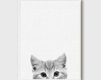 Kitten Print, Cat Photo, Printable Wall Art Gift, Cute Baby Animal, Nursery Decor, Black and White, Animal Photography, Grey White, Modern