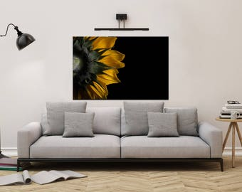 Floral Nature Photograph Backside of Sunflower - Fine Art Canvas - Home Decor Unframed Wall Art Prints