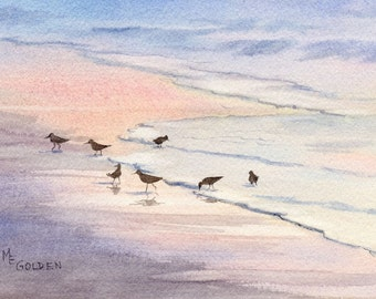Evenglow sandpipers at the edge of the sea