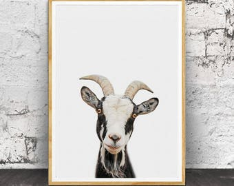 Goat Print, Goat Poster, Nursery Animals, Nursery Print, Nursery Printable, Nursery Farm Animal, Nursery Animal Print, Farm Animal Print