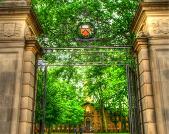 Princeton University print, fine art print, Princeton tigers, princeton wall art, nj wall art, Ivy League, college wall art, alumni gifts