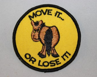 Move it or Lose it Patch