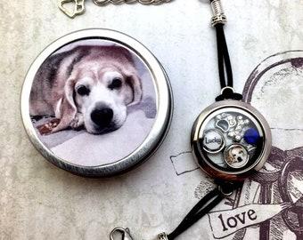 Pet Memorial Locket Floating Memory Locket Bracelet Pet Photo Locket Bracelet