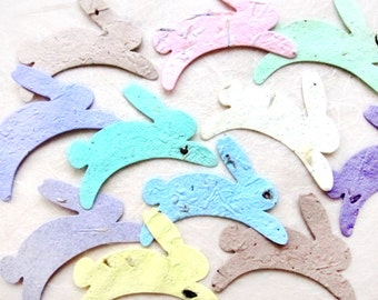 30 Seed Paper Bunnies - Flower Seed Paper Rabbits - Peter Rabbit Birthday Party Favors - Easter Basket Seeds with Personalized Cards