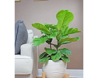 Wooden plant stand   Etsy
