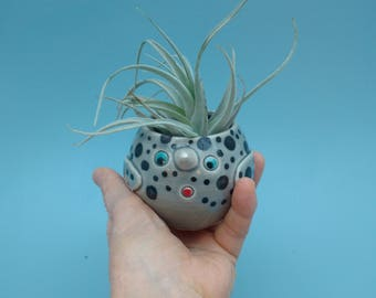 Medium Narwhal Standing Planters, Succulents, Air Plants, Succulents, Unicorns of the Sea