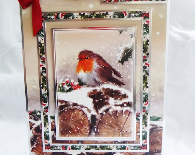 Red Robin Christmas Card, Festive Card, Warm Winter Wishes, Male or Female, Any Age, Mother, Father, Sister, Brother, Son, Daughter
