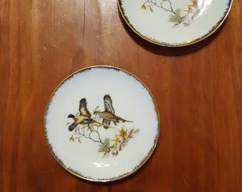 Vintage Hand Painted Pheasant Dishes, Two Small Game Bird Plates, China Set