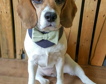 Dog Wedding bandana Dog wedding attire  sage green Dog bow tie Dog Outfit Dog  bandana. Dog collar. Dog tuxedo. grey Dog Collar Dog costume