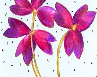 Oxalis Flower Art Print
